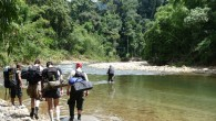 Phuket Jungle Trekking